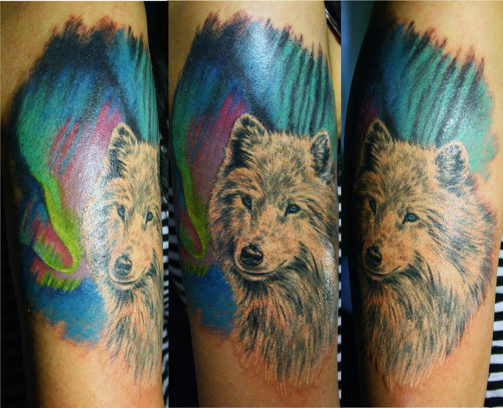 e2bcb3979 Wolf Tattoo Design Ideas and Pictures Page 6 - Tattdiz